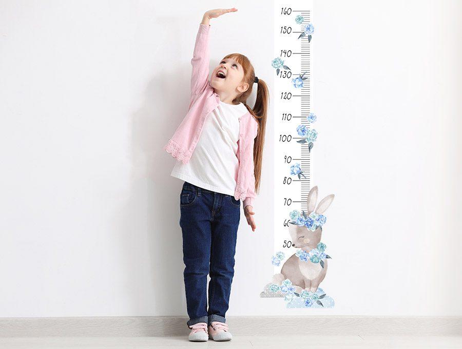 Měřítko vzrůstu králíček - modrý