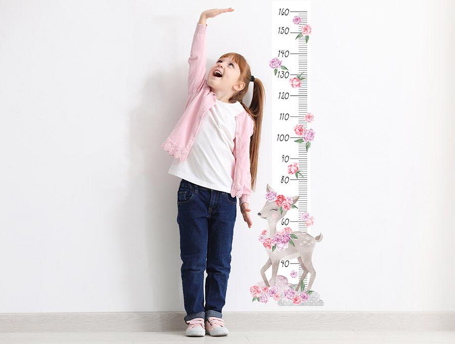 Měřítko vzrůstu srnka - růžová