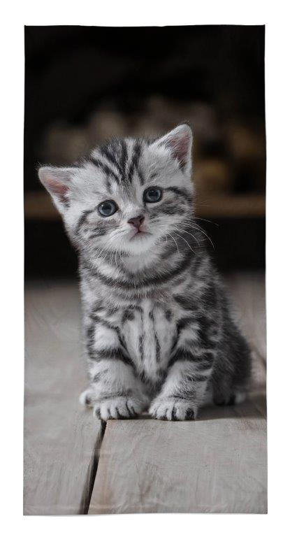Dětská osuška Kočička 140x70 cm